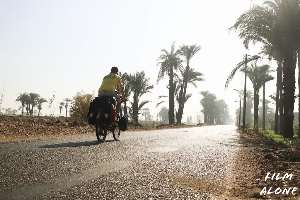 Tree lined road after Baqur, Egypt