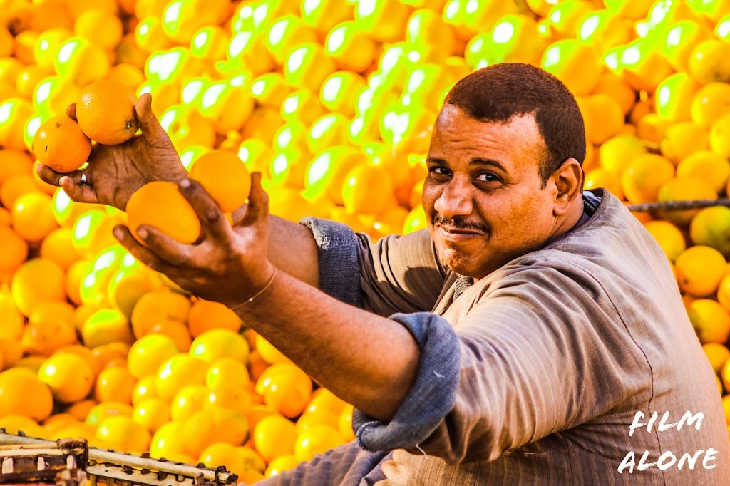 Orange Trader, Baqur, Egypt
